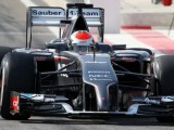 Sutil predicts opening round 'lottery'