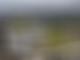 Hamilton cool on proposed Rio GP circuit