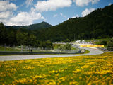 Austrian Grand Prix - Preview