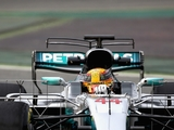 Mercedes run double T-wing