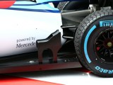 Williams 'weird parts' collecting data