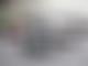 Fans' survey reveals favourite F1 driver and team