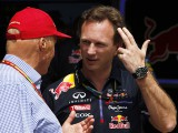 Horner backing Hamilton decision