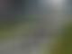 Confusion over Hamilton start