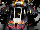 Red Bull canopy to be trialled during FP1 at Sochi
