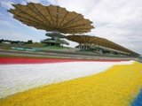 Malaysian track updated for 2016