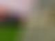 Hamilton fastest, Albon crashes, dog stops practice