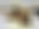 Bahrain's track-invading dog rescued