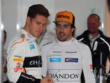 Alonso: Vandoorne closer to me than previous F1 teammates