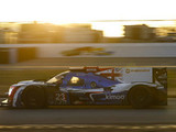 Daytona disappointment for Alonso
