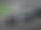 Hamilton enjoys 'greatest rollercoaster ride'