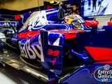 Toro Rosso can 'spring a few surprises this year'