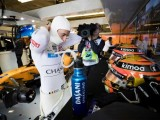 Vandoorne heading in to final F1 race with mixed emotions
