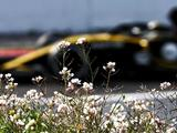 Carlos Sainz Jr surprisingly sees Toro Rosso and Haas as Renault's P4 rivals