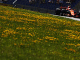 Austrian GP: Qualifying notes - McLaren
