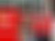 Haas: Gutierrez's Ferrari insight vital