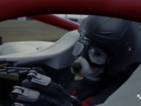 Video: Watch a dog drive an F1 car in new music video