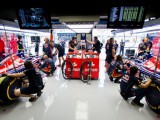 Background: The Toro Rosso candidates
