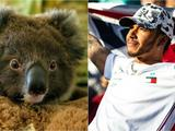 Australian fires: Lewis Hamilton pledges more than £250,000 to aid fight against disaster