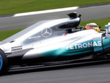 Mercedes may yet use fin
