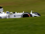 Williams abandons Massa appeal case