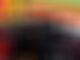 F1 drivers split on Halo introduction