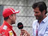 Sebastian Vettel must seek professional help to unlock new energy claims Mark Webber