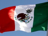 McLaren embarrassed by Mexican marijuana flag on merchandise stand