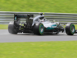 Nico Rosberg fastest as sudden downpour interrupts practice