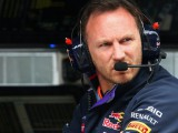 Horner advocates use of F1 adviser